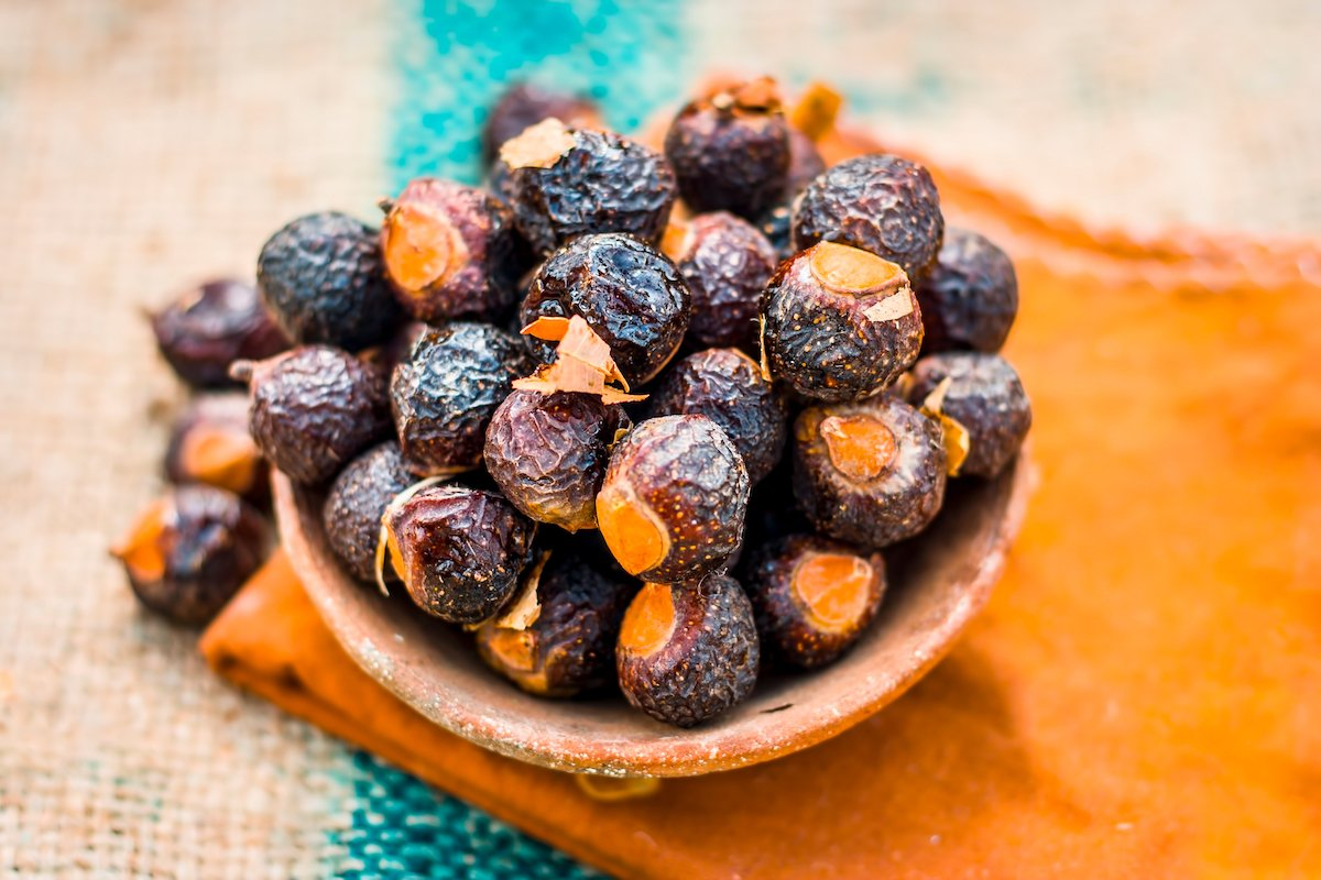 Ořechy mýdelníku