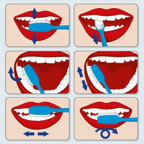 Správná technika čištění zubů - Království TianDe